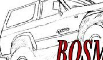 cropped-briefhoofd-autos.jpg